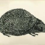Fabian Lehnert: Igel, 2014, Aquatinta, 30 x 50 cm