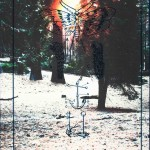 Marlene Bart: 2015 / November IV, 2015, Cyanotypie, Transfer,  27,5 x 42,5 cm