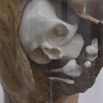 C. Le Dorf: Uterus Gravidus (Detail), 2014, Porzellan und Holz, 44 x 24 cm