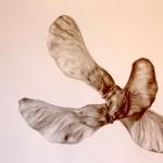 INK, Feldahorn, 2017, 21 x 29,7 cm
