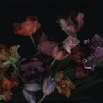 Luzia Simons, Stockage_119, 2011, 126 x 180 cm