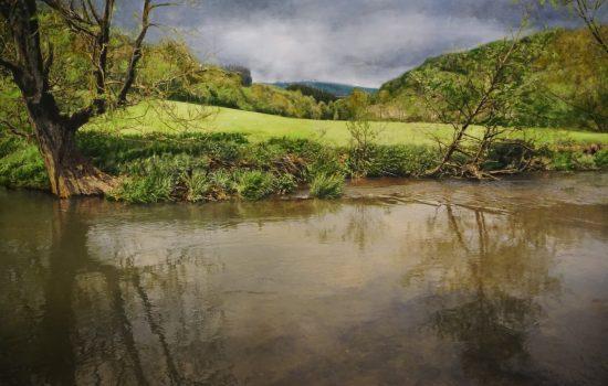 130 x 200 cm, Öl auf Leinwand, Fotografie und Firnis